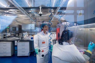 Viróloga china advierte de otros virus peores que el coronavirus