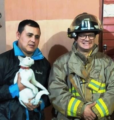 "Bomberos rescatan a ""Pelusita"" • Luque Noticias"