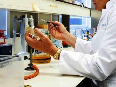 Vacuna  antituberculosa podría proteger contra Covid-19