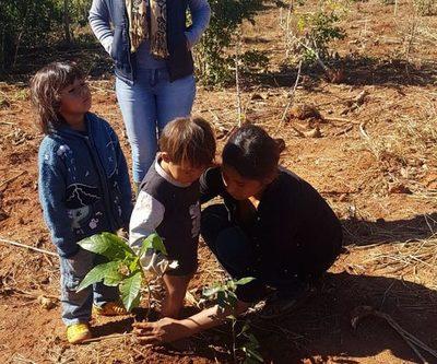 Entregan 500 plantines a comunidad indígena de Yguazú