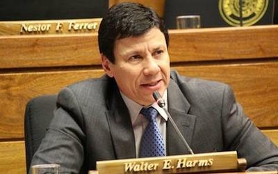 """""""Inaugurar obras por USD 400 mil es como que se caiga de la mesa la galleta ku'i y nosotros nos alegramos"""", dice Harms"""