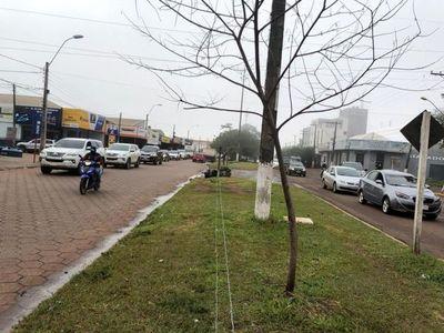 """PJC: Comerciantes en caravana por prohibición de vender mercaderias por el """"alambre guy"""""""