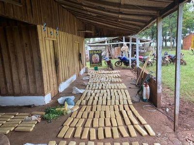 Incautan cerca de una tonelada y media de marihuana en Amambay