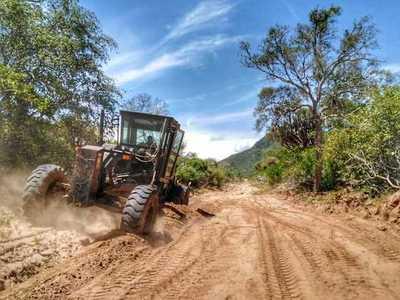 Inician apertura de picadas entre los Hitos VI y VII en la frontera con Bolivia