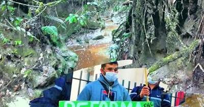 Medio ambiente: FNC pide atención al sector campesino y reforma agraria para combatir crisis