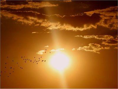 Así es cómo las explosiones solares pueden afectar a tu salud