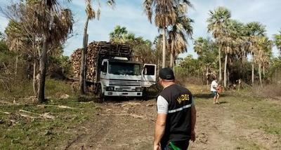 Desbaratan actividad de desmonte en zona de humedales del Bajo Chaco – Diario TNPRESS