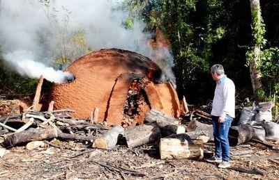 Persiste criminal depredación  del Parque Nacional San Rafael en Tavaí