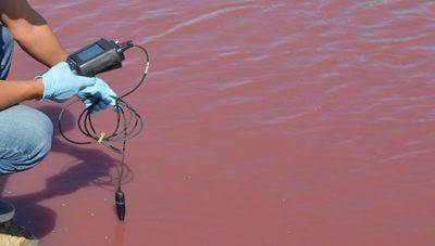 Loma Plata: Técnicos del MADES realizan estudios al tajamar que se tiñó de rojo