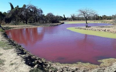 Mades toma muestras del tajamar rojo de Loma Plata