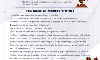 » INFONA lanza recomendaciones para prevenir incendios forestales