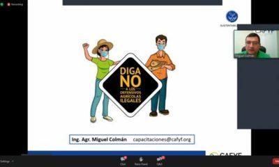 » CAFYF y FECOPROD orientan sobre trabajos de campo  tiempos de Covid