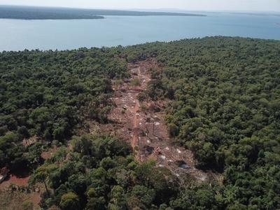 Apoyo interinstitucional para frenar ocupación y deforestación de bosques nativos