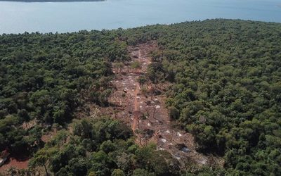 Detectan deforestación de 11 hectáreas en Puerto Indio