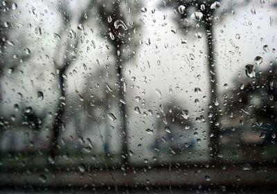 Para la próxima semana se prevén lluvias que pueden superar los 100 mm acumulados
