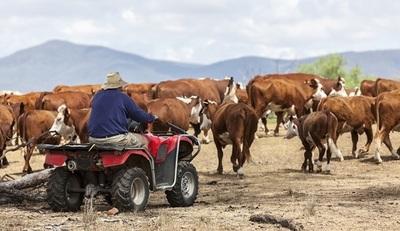 MLA lanzó Plan Estratégico 2025 para ganadería australiana