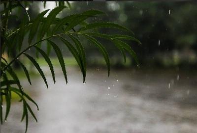 Semana con lluvias: algunas zonas podrán acumular hasta 100 milímetros