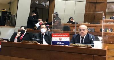 Solicitan juramento de Cartes como senador durante informe de Abdo