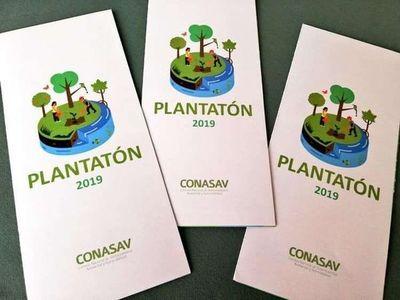 Plantatón 2019: Buscan paliar daño ambiental provocado por incendios y deforestación