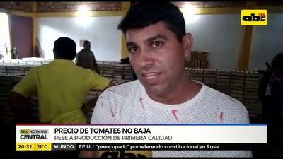 Precio de tomates no baja, pese producción de calidad