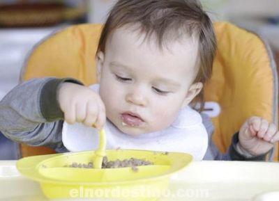 Cómo enfrentarse a la falta de apetito de los niños y porque es importante educar su conducta alimenticia