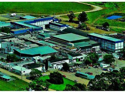 Multinacional Marfrig quiere iniciar operaciones en el país