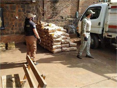 Senad incauta cerca de 900 kilos de marihuana en San Cosme