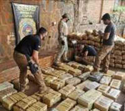 Incautan más de 700 kilos de marihuana