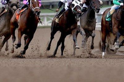 Carrera de caballos contaba con autorización, aseguran · Radio Monumental 1080 AM