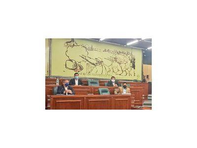 Concejales presentaron más pruebas para solicitar  intervención en Concepción