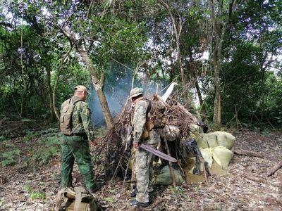 Destruyeron más de 476 toneladas de marihuana en reserva Morombi