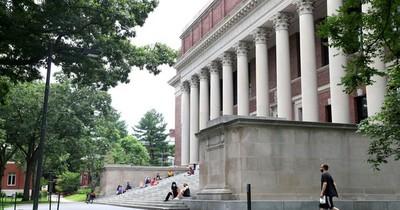 Tensión por educación en línea: EEUU deportará a estudiantes extranjeros sin clases presenciales