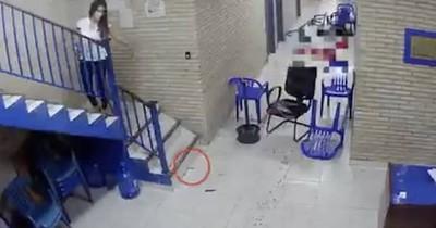Escena del crimen del caso Rodrigo Quintana: fiscales analizarán video