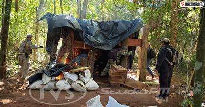 SENAD eliminó «un paraíso» con 29 toneladas de marihuana