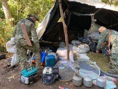 Destruyen complejo narco con diez campamentos para cultivos de marihuana