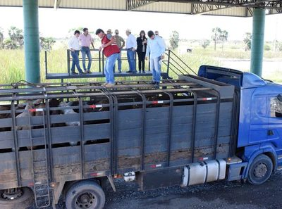 """""""La identificación universal de nuestro ganado emitirá una imagen de país más serio ante los mercados"""""""