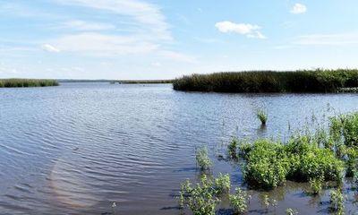 Lago Ypacaraí: Concejal de San Bernardino pidió solución definitiva y afirmó que no quieren que proyecto genere efectos negativos en la naturaleza