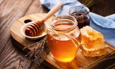 » Alianza busca mayor consumo de miel