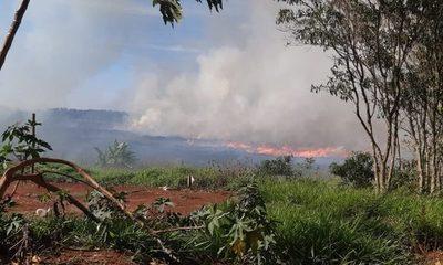 Reportan incendio de pastizal en Minga Guazú
