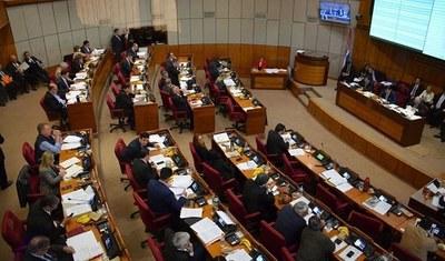 Senado rechazó veto parcial de Abdo a la anulación de facturas de ANDE y ESSAP
