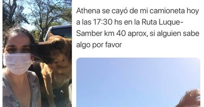 Apareció Athena, caso viral de la perra extraviada tras caer de camioneta en marcha